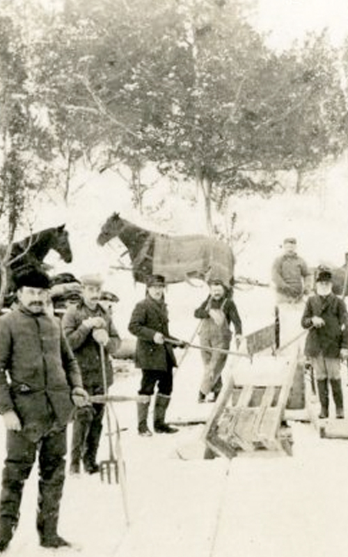 <h3>Ice Cutting, East Marion</h3> <br> <p><i>Photographer unknown</i></p> <strong>Ca. 1900</strong> <br> <br> <p>This scene shows a large group of workers posing for a photograph with horses, ice saws and other equipment needed for this winter work. Ice cutting was a major winter activity in East Marion for many decades.</p>