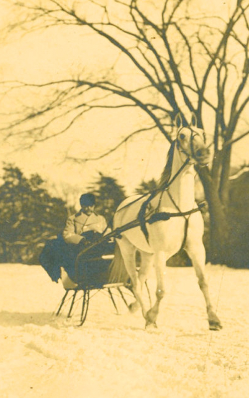 <h3>A Horse-Drawn Sleigh</h3> <p><i>Photographer unknown</i> <br> <strong>Late nineteenth or early twentieth century</strong> <br> Oil on Canvas</strong></p> <br> <p>This photograph shows Bryant L. Young (1872-1915) driving a horse-drawn sleigh somewhere in Orient. Bryant Young was active in Orient as a member of the Poquatuck Hook and Ladder Co., the Orient chapter of the Junior Order of United American Mechanics, and the Methodist Church.</p>