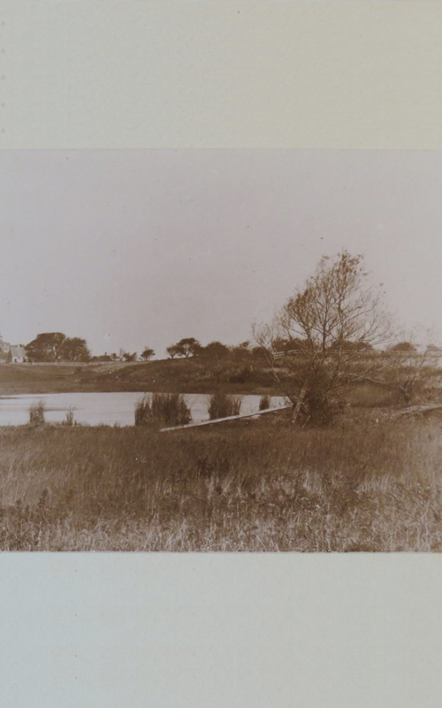 <h3>Major's Pond, Orient </h3> <p><strong>William Steeple Davis <br> October, 1897 <br> Gift of the William Steeple Davis Trust</strong></p> <p>This photograph of Major's Pond, one of his favorite subjects, was taken when Davis was thirteen years old.</p>