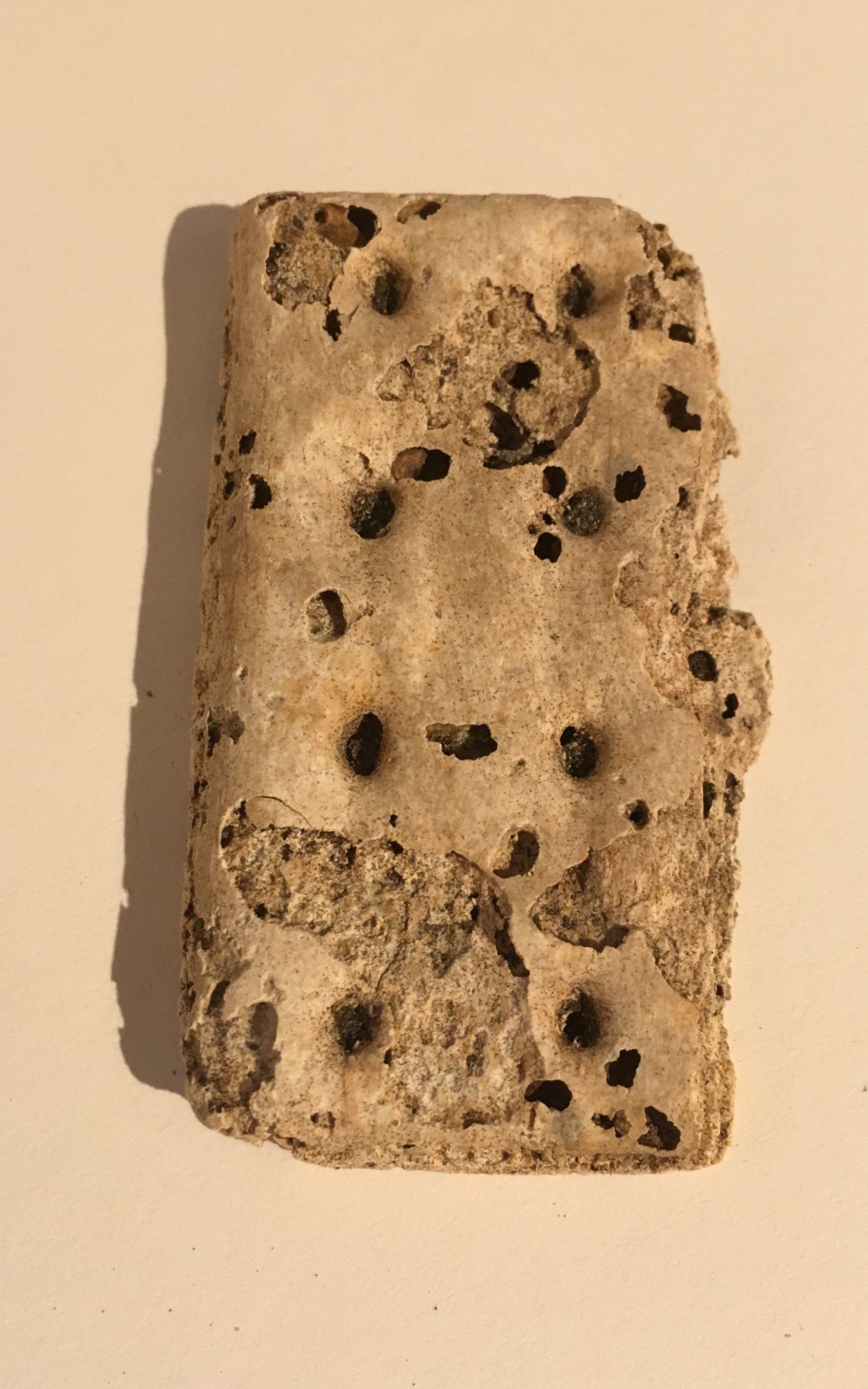 <h3>Hardtack</h3> <br> <p><strong>1860s</strong></p> <br> <p>A soldier's bread ration called hardtack was issued as a biscuit or cracker made of flour, water, and sometimes salt. It was baked up to six times, became very hard, and could last more than one hundred years, as in these examples. Hardtack was known to harbor insects, and had many other names as well: molar breakers, tooth dullers, and worm castles.</p>